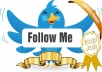 Get you 5000 TWITTER Followers (instantly)