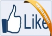 add 250+ FACEBOOK Fan Page Verified Likes