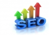 fully review your website and present you with best SEO Optimization advice