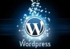 translate your English wordpress blog or website into Urdu