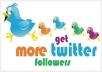 send you 15,000 TopQuality REAL Twitter FOLLOWERS no eggs to your account without the need of your password within 24 hours