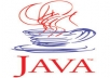 I am a Java programmer and I have already completed so many projects. So do not be afraid to buy my gig. You will definitely satisfy by my work. Delivery day will depends on your scope. Sometimes it may be few hour work.