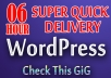 setup your professional ★wordpress★ site within ►6hours◄