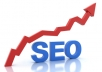 give you a detailed seo report of your website and top 10 competing websites for