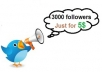 get you  3000+Twitter followers
