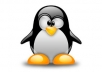 generate and configure SSL certificate on Linux
