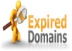 find up to 25 expired domains with your EXACT KEYWORD(S)