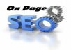 make on page SEO for your website only