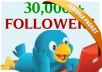 Get +30,000 [30k] TWITTER FOLLOWERs [Very Fast]