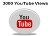 Give you 3000 REAL Youtube visitor views+100 likes