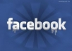 give 800+ Facebook likes on your fanpage and advertise your website to 300,000+ twitter followers in 24 hours