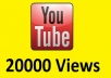 give you 20000+ Real Human youtube views,30+ likes,50 subscribers