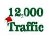 Tell you a secrete website to buy 12000 high targeted real human web traffic for just 4 dollar