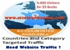 send || GUARANTEEd || Adsense safe 4,000 GEO Targeted Real Human United States,Canada,Uk,Europe,Australia or World Wide Traffic