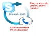 Provide 1 US Phone Number which forwardable to Skype