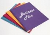 Draft  a Researched Business Plan and a Business Professional Business Profile