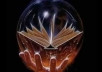 advertise your divination psychic medium website, blog, service to my 2856 active and targeted fans on my psychic medium on facebook fanpage