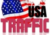 deliver 5000 Real Human Traffic To Your Website/Blog Maximum visitor from USA only