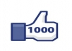 give You 1000+ High Quality Real Active,stable Facebook Likes/Fans in Less Than 40 Hours