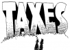 give you tax advice Enrolled Agent
