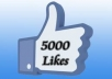 add 4000+ facebook likes / followers  or 40000 twitter followers with 24 hours