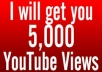 Provide you 5,000 Organic YouTube views on your Video from Facebook