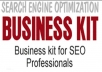 Show You How to Start Your Own SEO Business – Complete Business Startup Kit