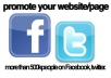 promote your website/page more than 500000 people on Facebook, twitter.