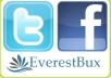 give you 300 Real Facebook likes+ 300 Real Twitter followers