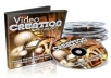 give you over 600 PLR products worth $2000