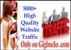 send 5000+ Genuine Human Website TRAFFIC to Your url with Real Time Tracking Report
