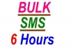 send for you 100 SMS bulk worldwide