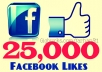 get you 25,000+ Facebook Fans/Likes to any Facebook page