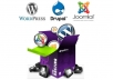 install and setup Wordpress or Joomla or Drupal in your hosting only
