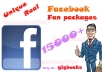 give you 12000(12K)+ Unique,Real Guranteed Facebook Likes
