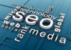 Provide You With Professional 500 Permanent BACKLINKS To Your Website