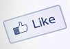 provide 3000+ likes to your facebook fanpage