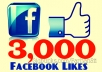 get you 3000+ Facebook Fans/Likes to any Facebook page