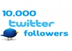 supply You 1500+ Guaranteed Real and Active USA Twitter Followers follow in Less than 72 Hours without the need of your passwords