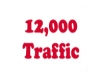 deliver 12000 traffic hits to your website