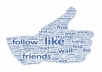 give you 5000 Facebook Likes to your Fan Page