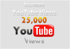 give you guaranteed 25,000 youtube views to your youtube video