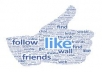 provide 1000 real and active followers, likes and views on your Facebook, Twitter and YouTube profiles