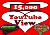 will add 25000+ youtube views to your video GUARANTEED