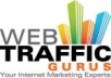 deliver to you 2500 real traffic to you website in 24hours