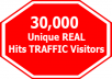 Offer★1000 OVER DAILY VISITORS FOR 30 DAYS just