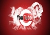 provide you 2000 youtube views + 50 likes within 3 days