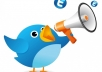 send your tweet till 140 characters on Russian language to more than 25 000 my followers