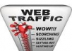 Tell you how to get over 2,000 targeted real human visitors to your website daily