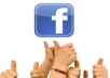 give you 450+ facebook website likes fast(No Fanpage)